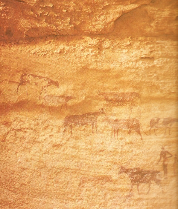 David Attenborough. The Living Planet. Rock painting of cattle and herders, Tassili.