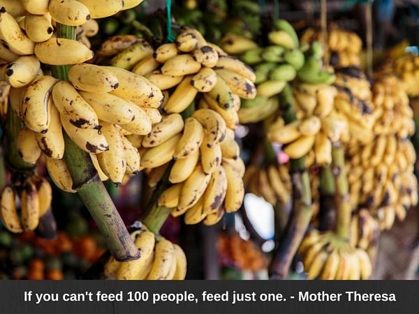 Bananas_042216